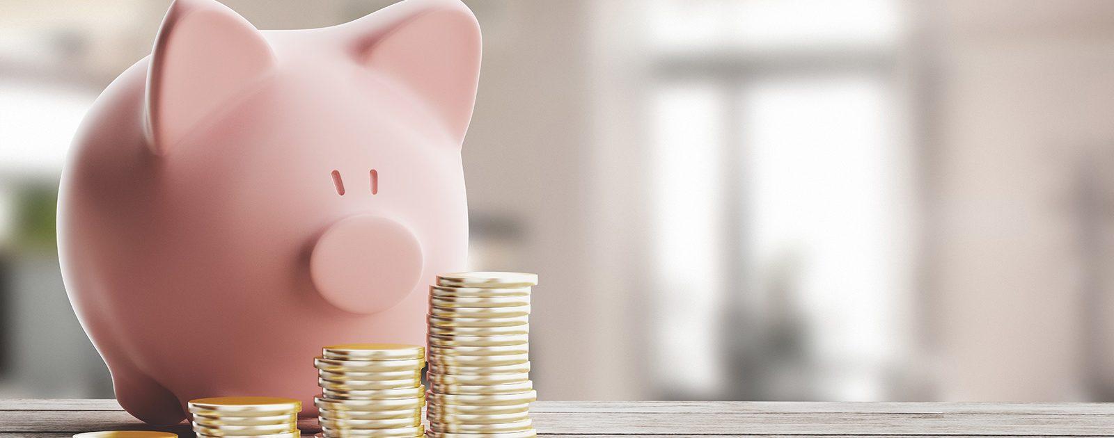 Sparschwein mit Geld aus Kinderzuschlag davor.