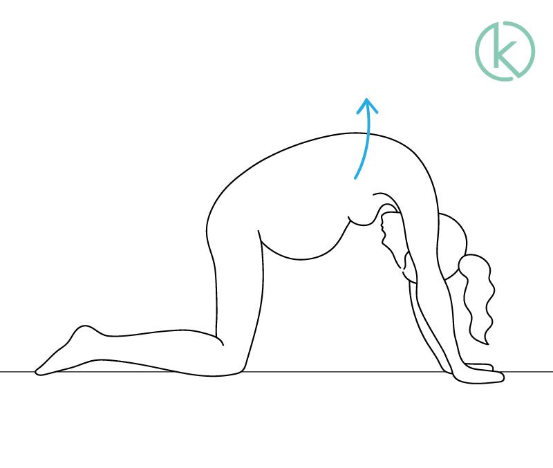 Schwangere Frau macht Katzenbuckel zur Linderung ihrer Rückenschmerzen.