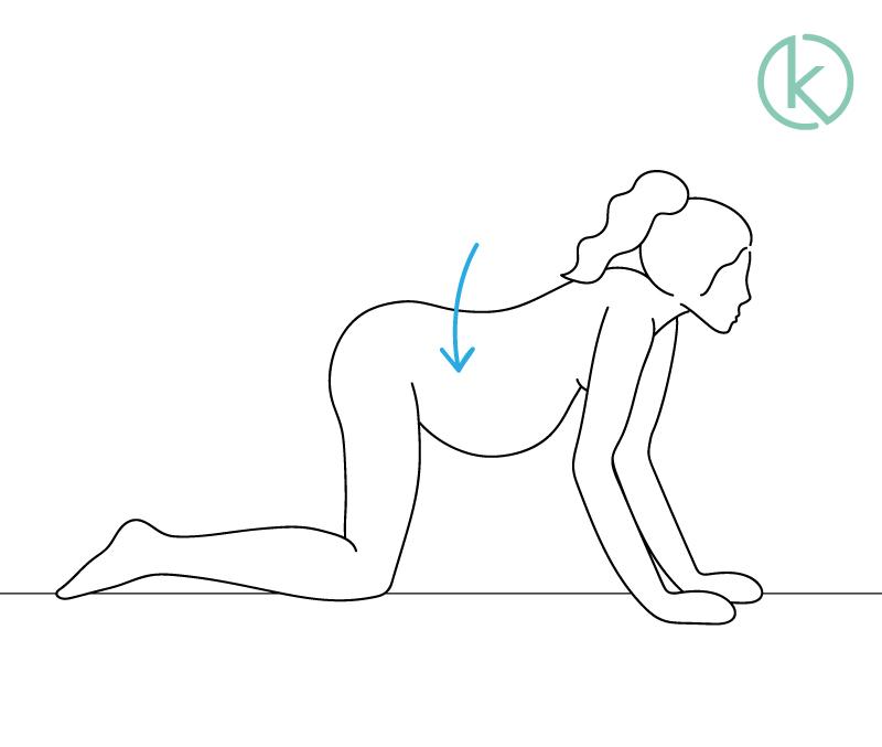 Schwangere Frau macht Pferderücken (Hohlkreuz), um ihre Rückenschmerzen zu lindern.